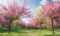 في مطلع ربيع جديد