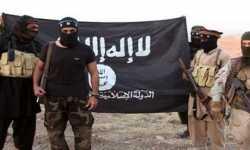 نسبة دارسي الشريعة في التّنظيمات الإرهابيّة