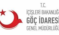 قانون الأجانب والحماية الدولية في تركيا