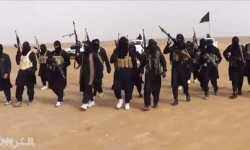 شباب الإسلام .. اقرؤوا التاريخ وادرسوا التجارب