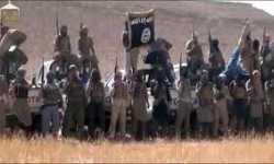 النصرة وداعش في الأندلس