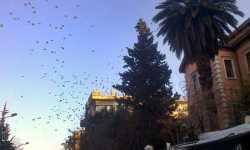 سماء دمشق التي تزداد ظلمة