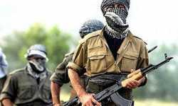 المجلس الوطني الكردي يحذر العمال الكردستاني من مغبة مواصلة دعمه لنظام الأسد