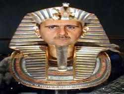رحلة الجنون بين الأسد وفرعون