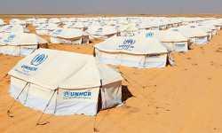 تأمين أكثر من 900 خيمة للاجئين السوريين إلى الأردن