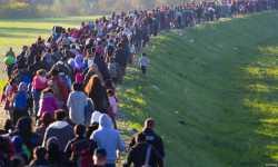 لماذا استقبلت الدول الأوروبية آلاف الشبيحة السوريين كلاجئين؟
