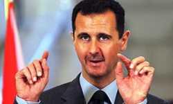 الأسد اختار