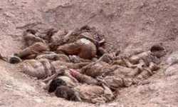 مقابر جماعية للمئات من ضحايا مجازر تنظيم الدولة بسوريا