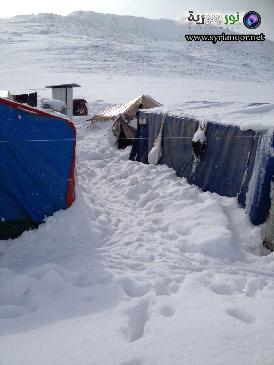 جولة عدسة نور سورية في مخيم عرسال في لبنان