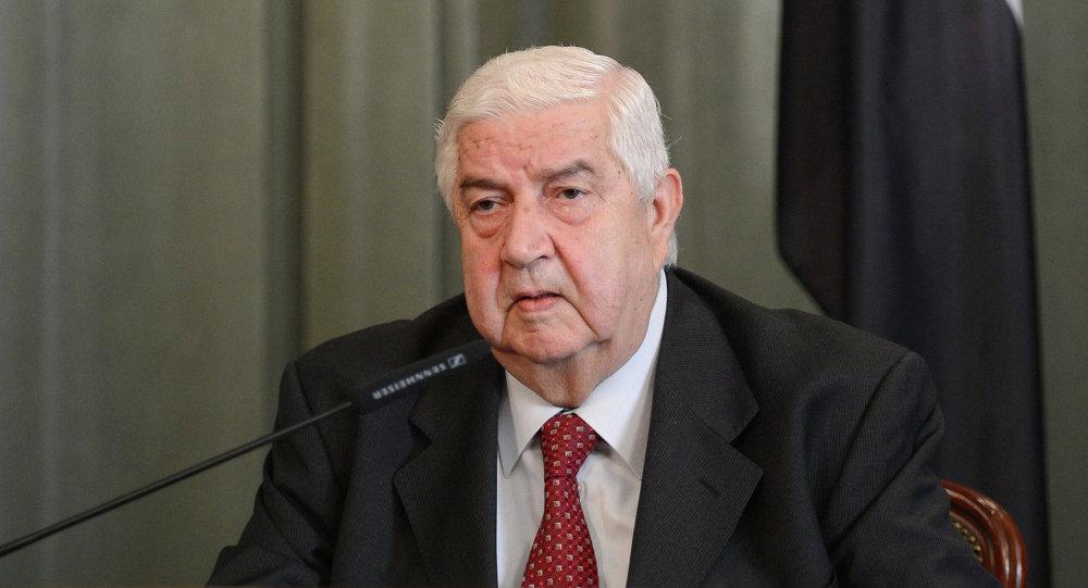 وليد المعلم: نرفض إقامة مناطق آمنة في سوريا تراقبها الأمم المتحدة!
