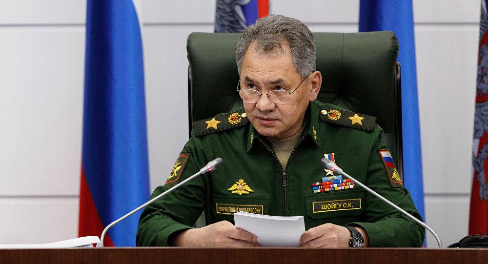 وزير الدفاع الروسي: الحرب في سورية انتهت فعلياً