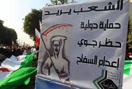 التدخل العسكري بسوريا يمنع الحرب الأهلية