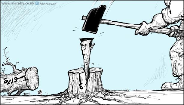 الأسد معياراً لسوتشي