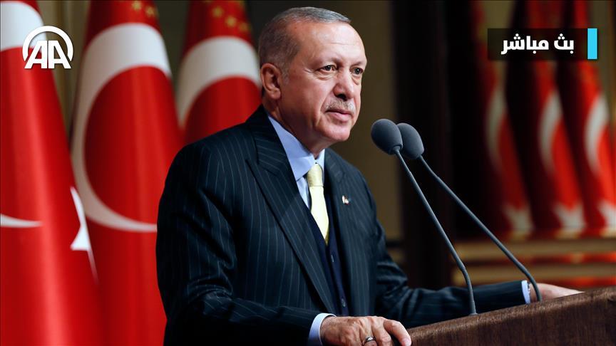 أردوغان: حلفاؤنا تعمدوا تقويض مقترح تركيا بإنشاء مناطق آمنة في سوريا