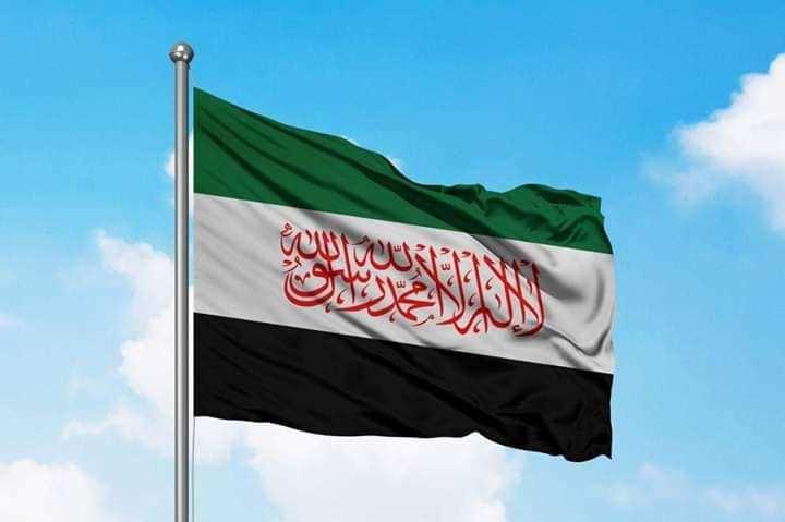 حول هيئة تحرير الشام وعلم الاستقلال