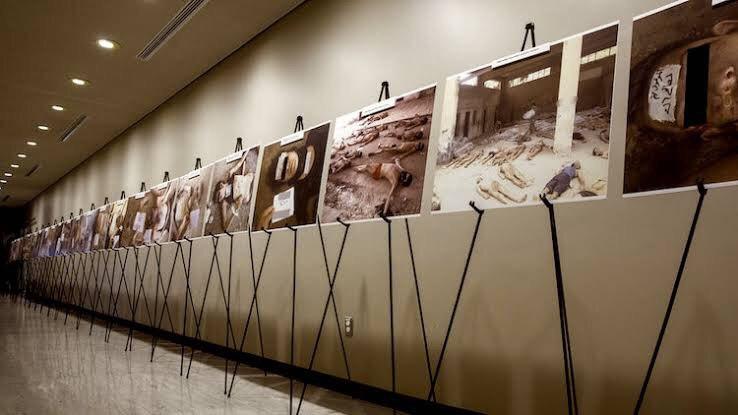 سوريون يتعرفون على جثث أقاربهم في صور