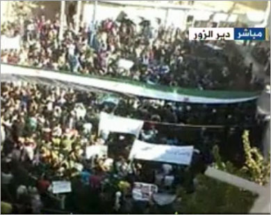 أخبار يوم الاثنين 12-12-2011م