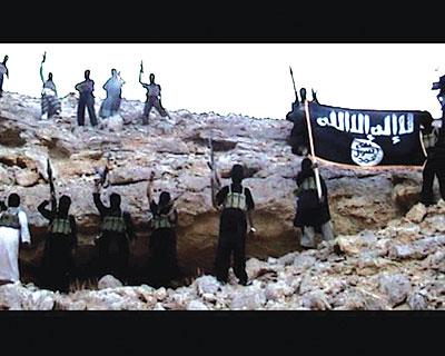 الجهاد الشامي.... مآلات واجتهادات