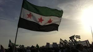 الحالة السورية وتذبذب الموقف السياسي