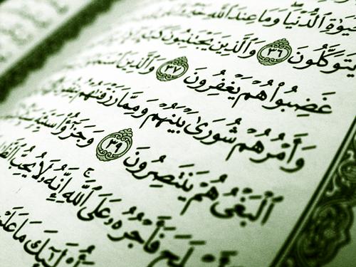مقترح ومناشدة لعلماء الأمة الإسلامية