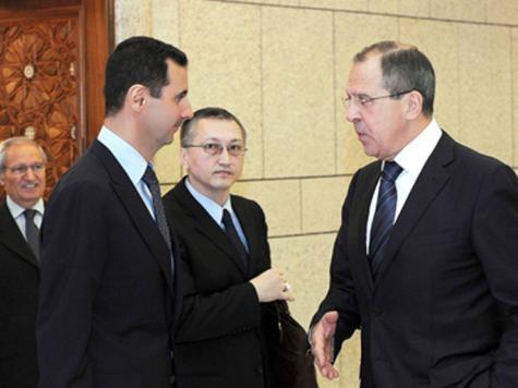 الأسد: هدوء يخفي القسوة