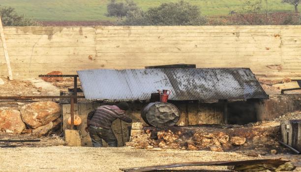 ريف إدلب: تغييرات جغرافية يفرضها النزوح نحو الأراضي الزراعية