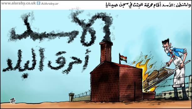 الأسد بطل المحرقة
